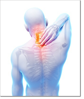 Study Shows Safety of Chiropractic