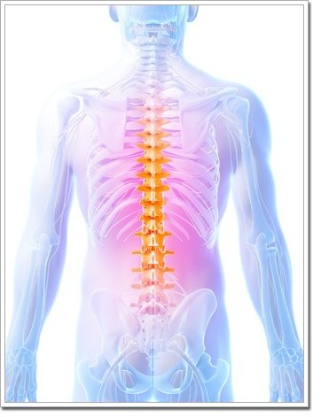 chiropractic and aging spine